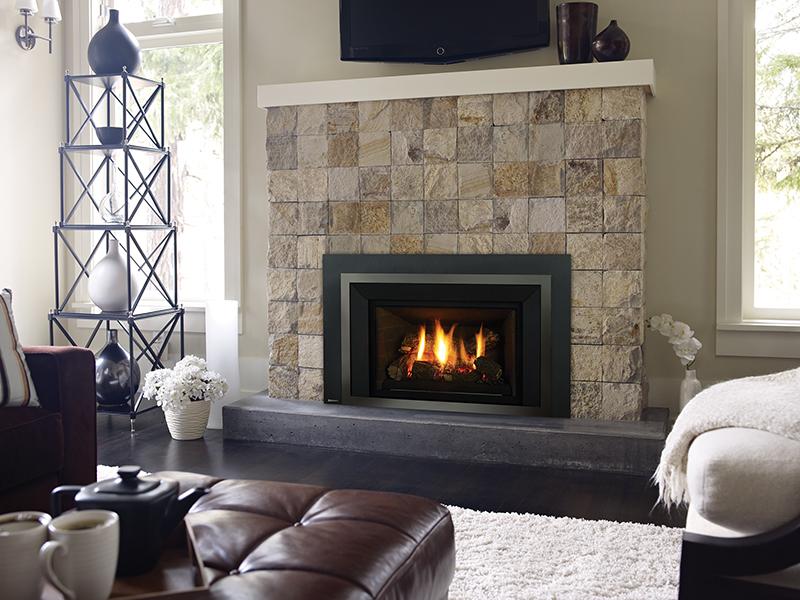 Regency Fireplace Insert Fireplaces